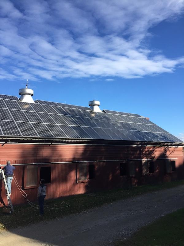 River Horse Farm Community Solar Image 5