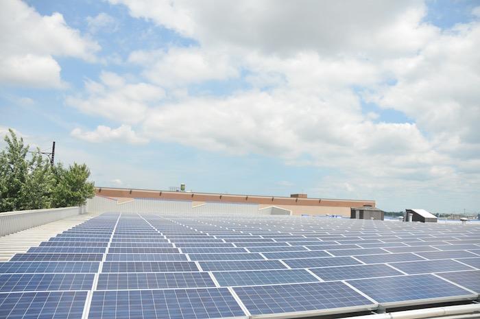 Palmer Community Solar Image 3