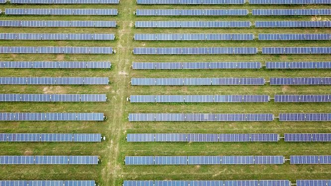 Palmer Circle Community Solar Image 4