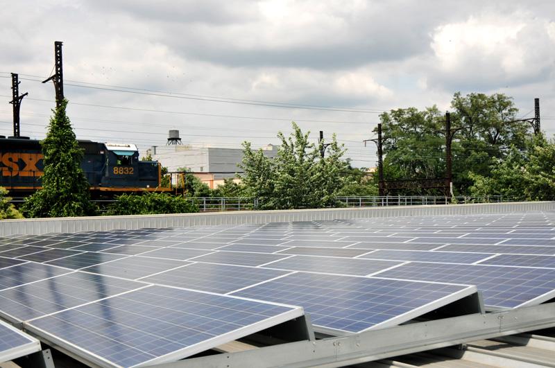 South Bronx Solar Garden Image 2