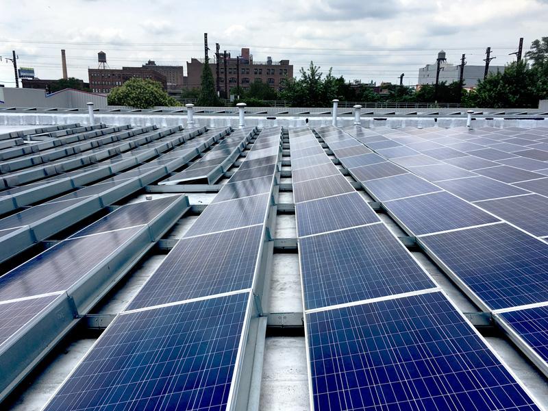 South Bronx Solar Garden Image 4