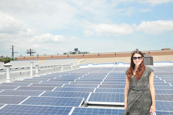 South Bronx Solar Garden Image 5